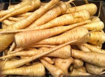 Ни е морков, ни е ряпа, но е вкусно да се папа. Що е то?
