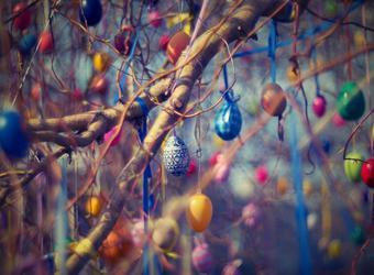 5 Начина за боядисване на Великденски яйца в лесни стъпки + съвети