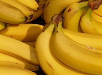 Какво (не) знаете за бананите